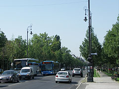Row of trees on the Andrássy Avenue, viewed from the Heroes' Square - Budapeşte, Macaristan