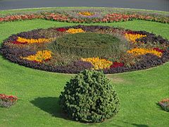 Flower carpet in the middle of the roundabout in the Clark Ádám Square - Budapeszt, Węgry
