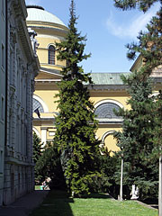The Basilica of Eger, viewed from the park in the neighbouring square - Eger (Erlau), Ungarn