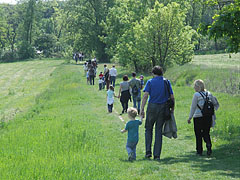 The people who arrives to the May Day event on foot through the field - Gödöllő (Getterle), Ungarn
