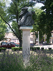 Bronze memorial of the victims of the World War II and the Hungarian Revolution of 1956 on a white stone pedestal - Nagykőrös, Ungarn
