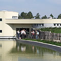 """Koi carps are swimming at the outdoor enclosures of the """"Chimpanzee World"""", in the pond (actually a water ditch) - Veszprém (Wesprim, Weißbrunn), Ungarn"""