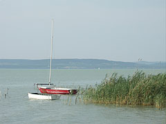 Small moored sailboat and a boat at the reeds - Balatonlelle, هنغاريا