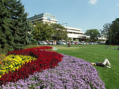 """The Great Meadow (""""Nagyrét"""") on the Margaret Island, a grassy and flowery area on the north side of the island, surrounded by large trees and hotels - بودابست, هنغاريا"""