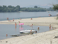 Many people bathing in the water of the Danube, which is here in the gravel deposit bays shallow, gently deepening and in the summertime warm as well - Dunakeszi, هنغاريا
