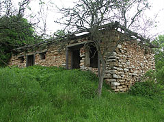 One of the ruined buildings of the abandoned former Derenk settlement - Aggteleki karszt, Hungary
