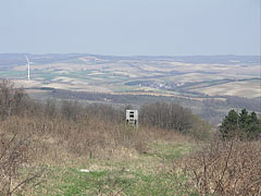 "The ""Galamb-berek"" (literally ""Pigeon Grove"") viewed from ""Csőszpuszta"" meadow - Bakony Mountains, Hungary"
