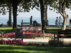 Picturesque park in Balatonfüred, on the lakeside of Balaton - Balatonfüred, Hungary