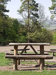 Picnic tables and benches made of tree trunks in the meadow near the tourist shelter - Börzsöny Mountains, Hungary
