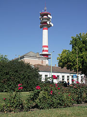 Rose bushes in the square, and the TV tower of Cegléd - Cegléd, Hungary