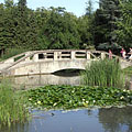 Small lake with a bridge in the Érsekkert park - Eger, Hungary