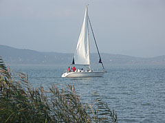 Sailboat on the Balaton - Fonyód, Hungary