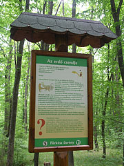 One of the information boards of the Fürkész educational nature trail - Jósvafő, Hungary