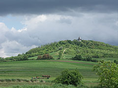 Before a spring shower - Mogyoród, Hungary