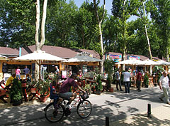 Line of restaurants on the promenade, in the shadow of tall trees - Siófok, Hungary