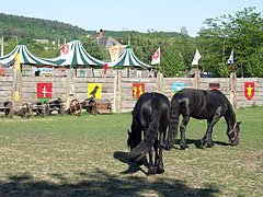 A site prepared for medieval knightly games, at the foot of the castle hill - Sümeg, Hungary