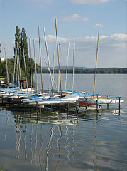 Small sailboat harbour - Tata, Hungary