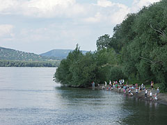 Children browsing the shore of River Danube at Visegrád - Visegrád, Hungary