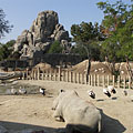 Savanna enclosure, and the Great Rock in the background - ブダペスト, ハンガリー
