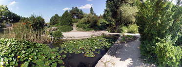 Margaret Island (Margit-sziget), Small lake on the north side of the island - بودابست, هنغاريا